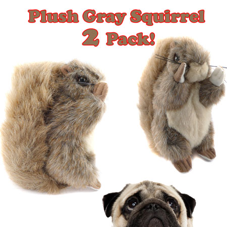 Plush Gray Squirrel 2 Pack!